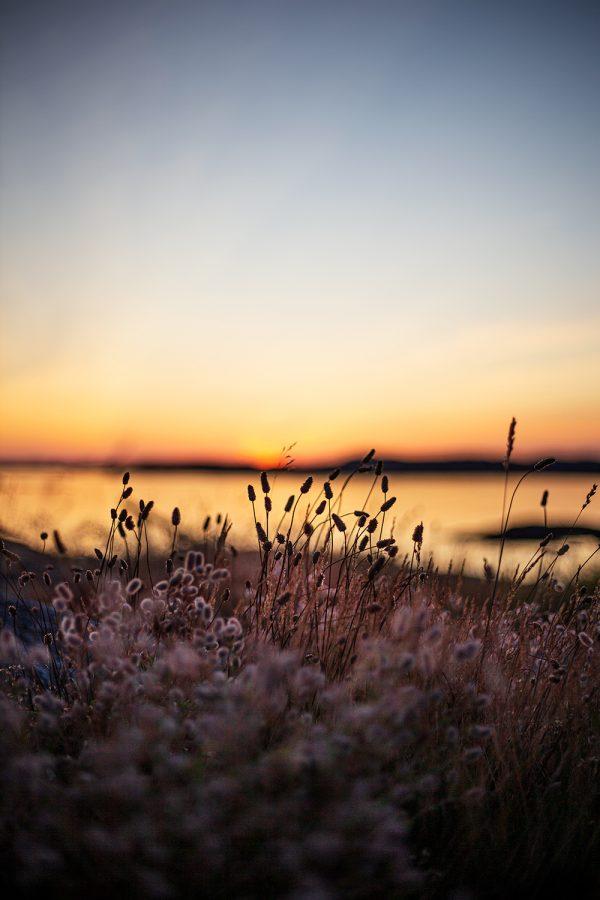 Solnedgång Klädesholmen